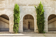 Theatrum Anatomicum en la facultad de medicina Montpellier Imagen de archivo libre de regalías