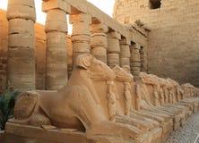 thebes de temple de série de karnak de l'Egypte Photographie stock