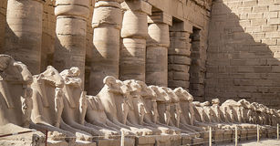 thebes de temple de série de karnak de l'Egypte Photographie stock libre de droits