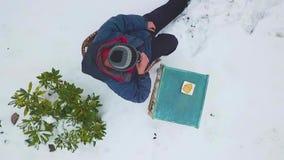 Thee in de winter stock video