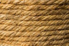 Thee gemaakte ââfrom kruiden Stock Afbeeldingen