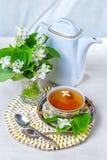 Thee, Kop thee, diverse soorten thee, Thee met jasmijn Stock Fotografie