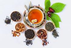 Thee, Kop thee, diverse soorten thee, thee op de lijst Royalty-vrije Stock Fotografie
