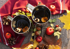 Thee met appel en kruiden Stock Foto's