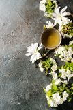 Thee met de lentebloemen Stock Afbeeldingen
