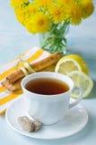 Thee met een citroen Royalty-vrije Stock Foto
