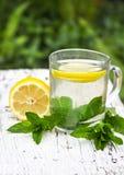 Thee met munt en citroen Stock Fotografie