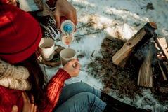 Thee op een de winterpicknick stock afbeeldingen