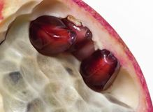 Thee pomegranate seeds under the peel. The macro view of three pomegranate seeds under the peel Royalty Free Stock Photo
