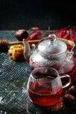 Thee van de de herfst de rode hibiscus Royalty-vrije Stock Afbeeldingen