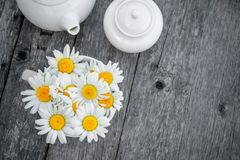 Thee van kamillebloemen wordt voorbereid voor thee die Thee van natuurlijke kruiden De ruimte van het exemplaar Stock Fotografie
