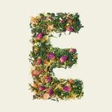Theeblad met bloemen en vruchten, brief E op witte achtergrond, hoogste mening stock foto's
