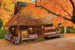 Theehuis bij dalingsseizoen Nana, Japan stock afbeelding