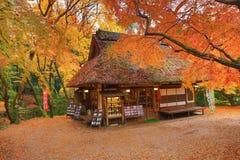 Theehuis bij dalingsseizoen Nana, Japan royalty-vrije stock fotografie