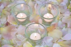 Theelichten die op een achtergrond van roze bloemblaadjes branden Stock Foto's