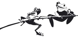 Two frogs on branch in black and white. Their is two frogs in black and white who are climbing on branch royalty free illustration