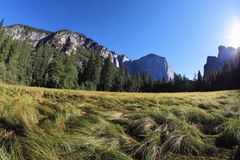 Thel glade in Yosemite park on sunrise Royalty Free Stock Images
