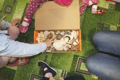 Thematische Besetzung im Kindergarten auf dem Thema des Meeres Seeoberteile und -schalentiere in einem Nahaufnahmekasten lizenzfreie stockbilder