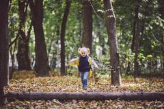 The theme children outdoor activities. Funny little baby Caucasian blond girl walks through forest overcoming obstacles, tree fell royalty free stock photography