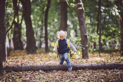 The theme children outdoor activities. Funny little baby Caucasian blond girl walks through forest overcoming obstacles, tree fell royalty free stock images