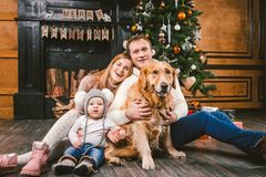 Theme Christmas and New Year family circle. Young Caucasian family with 1 year old child dog breed Labrador Golden Retriever. Sitting on wooden floor home in stock photography