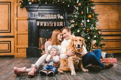 Theme Christmas and New Year family circle. Young Caucasian family with 1 year old child dog breed Labrador Golden Retriever. Sitting on wooden floor home in royalty free stock image