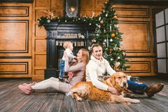 Theme Christmas and New Year family circle. Young Caucasian family with 1 year old child dog breed Labrador Golden Retriever stock photo