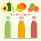 The theme fruit Stock Photo