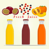 The theme fruit. Abstract vector illustration logo for red passion fruit Stock Photography