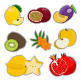 The theme fruits Stock Images