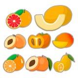 The theme fruits Royalty Free Stock Photo