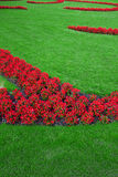 Theme Green. A flower bed with red flowers and green lawn (vertical ) (2 stock photos