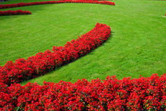 Theme Green. A flower bed with red flowers and green lawn (horizontal) (2 Stock Photo