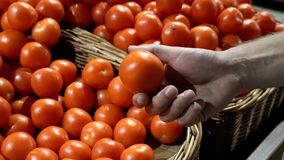 Theme health and natural food. Close-up of the hand of a Caucasian man holding, picking tomatoes in a vtrine in a supermarket box. stock images