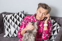Theme old person uses technology. Mature contented joy smile active gray hair Caucasian wrinkles woman sitting home. Living room on sofa with fluffy cat using royalty free stock images