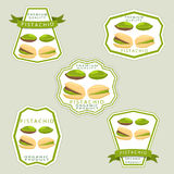 The theme pistachio. Abstract vector illustration logo whole ripe green pistachio nut Royalty Free Stock Photography
