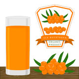 The theme sea buckthorn Royalty Free Stock Images
