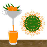 The theme sea buckthorn Royalty Free Stock Photography