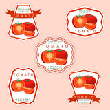 The theme tomato Royalty Free Stock Photo