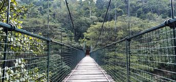 Hanging bridge at the Kallada Irrigation dam - Thenmala stock photos