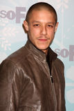 Theo Rossi. LOS ANGELES - JAN 11: Theo Rossi arrives at the FOX TCA Winter 2011 Party at Villa Sorriso on January 11, 2010 in Pasadena, CA stock image