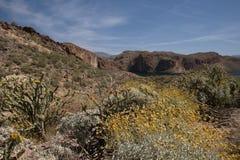 Theodore Roosevelt Lake, Arizona, USA Royalty Free Stock Photo