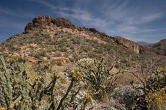 Theodore Roosevelt Lake, Arizona, USA Stock Photos
