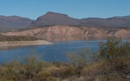 Theodore Roosevelt lake close up in southern Arizona. A close up section of the Theodore Roosevelt Lake in southern Arizona. It is part of the Tonto National stock photography