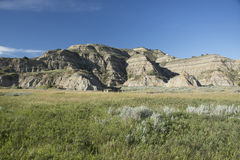 Theodore Roosevelt National Park Stock Images