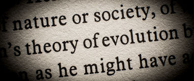 Theory of evolution. Or competition concept on page Royalty Free Stock Photography