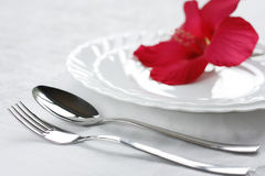 The Theory of the sound feeding. Blanching tablewear Stock Images