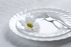 The Theory of the sound feeding. Blanching tablewear Royalty Free Stock Photography