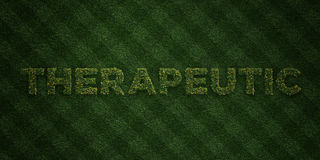 THERAPEUTIC - fresh Grass letters with flowers and dandelions - 3D rendered royalty free stock image Royalty Free Stock Photography