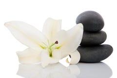 Therapeutic stones Stock Image